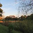 小船橋水辺公園