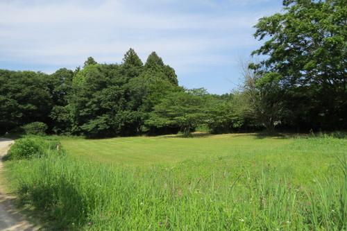 牛久自然観察の森